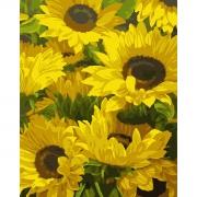 """Набор в коробке, картина по номерам """"Солнечные цветы"""", 40*50 см., SANTI"""