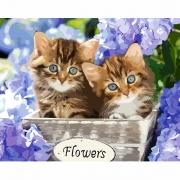 """Набор, картина по номерам """"Удивительные котята"""", 40*50 см., SANTI"""
