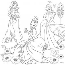 """Холст с контуром """"Принцессы-3"""" (30см*30см)"""