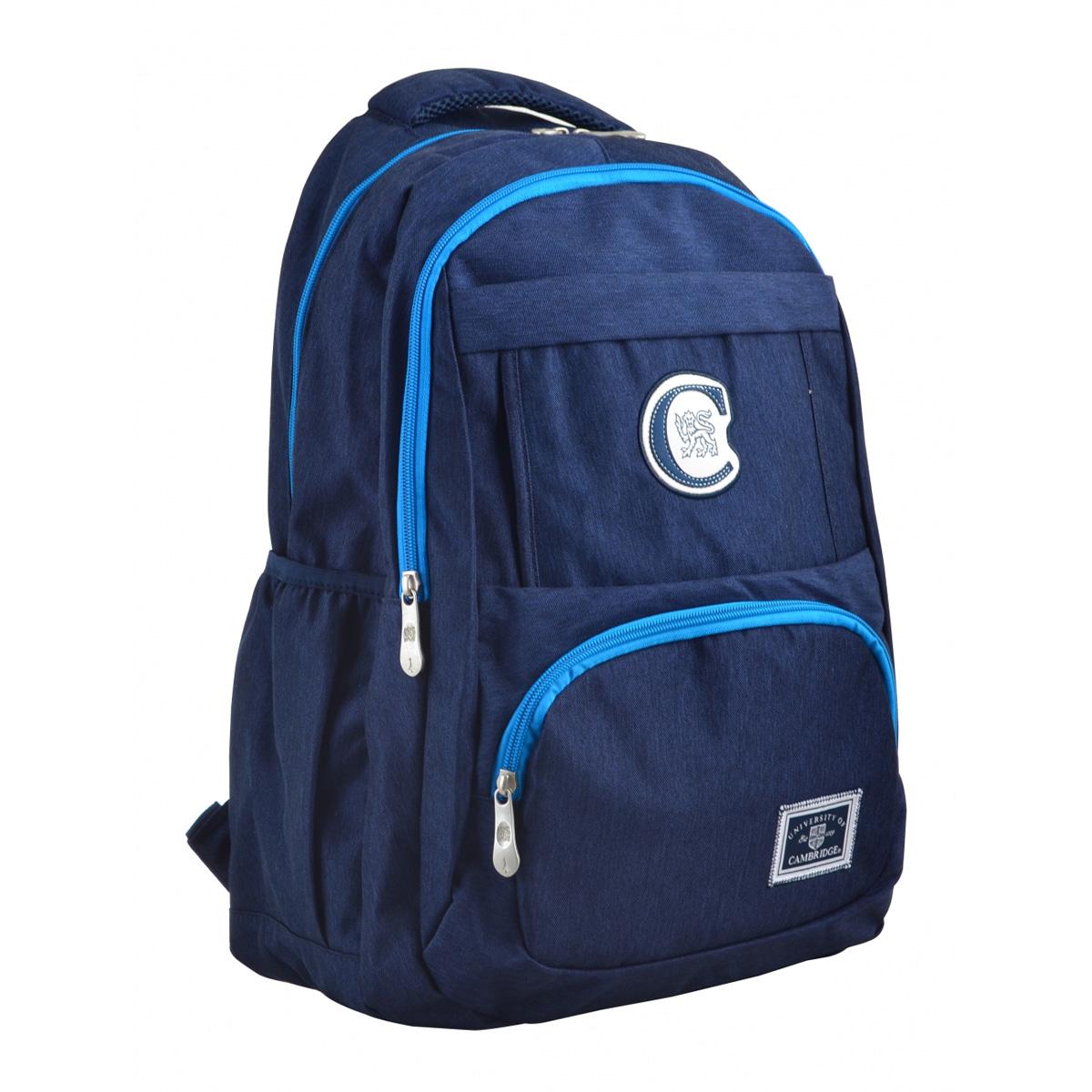 Рюкзак молодежный CA 151, 48х30х15, синий