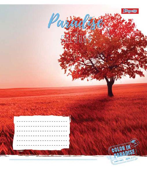 А5/12 кл. 1В PARADISE COLOURS, тетрадь ученич.