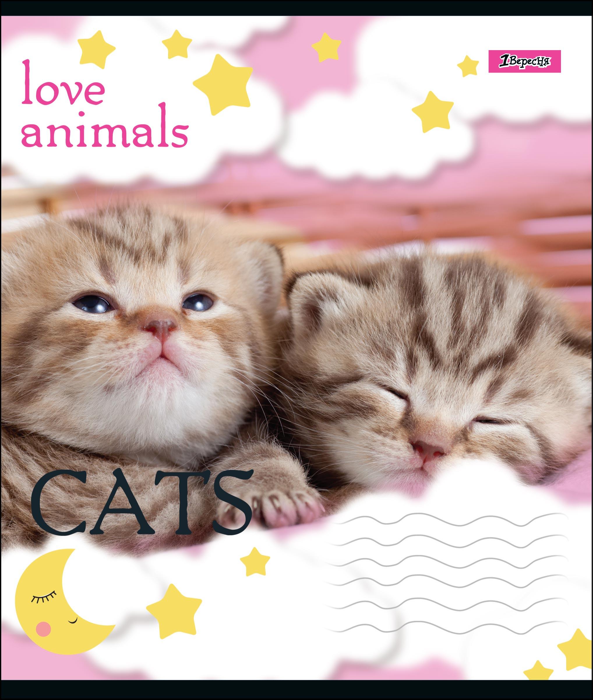 А5/12 кл. 1В LOVE ANIMALS, тетрадь учен.