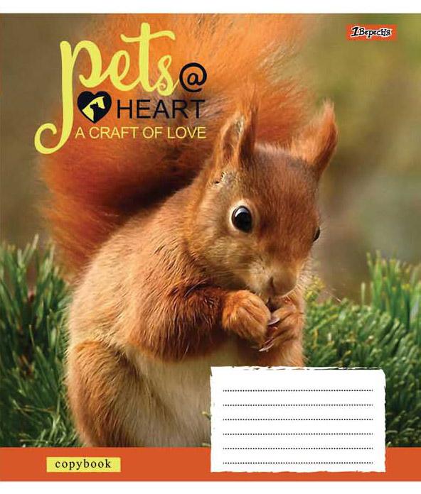А5/12 кл. 1В Pets heart, тетрадь ученич.