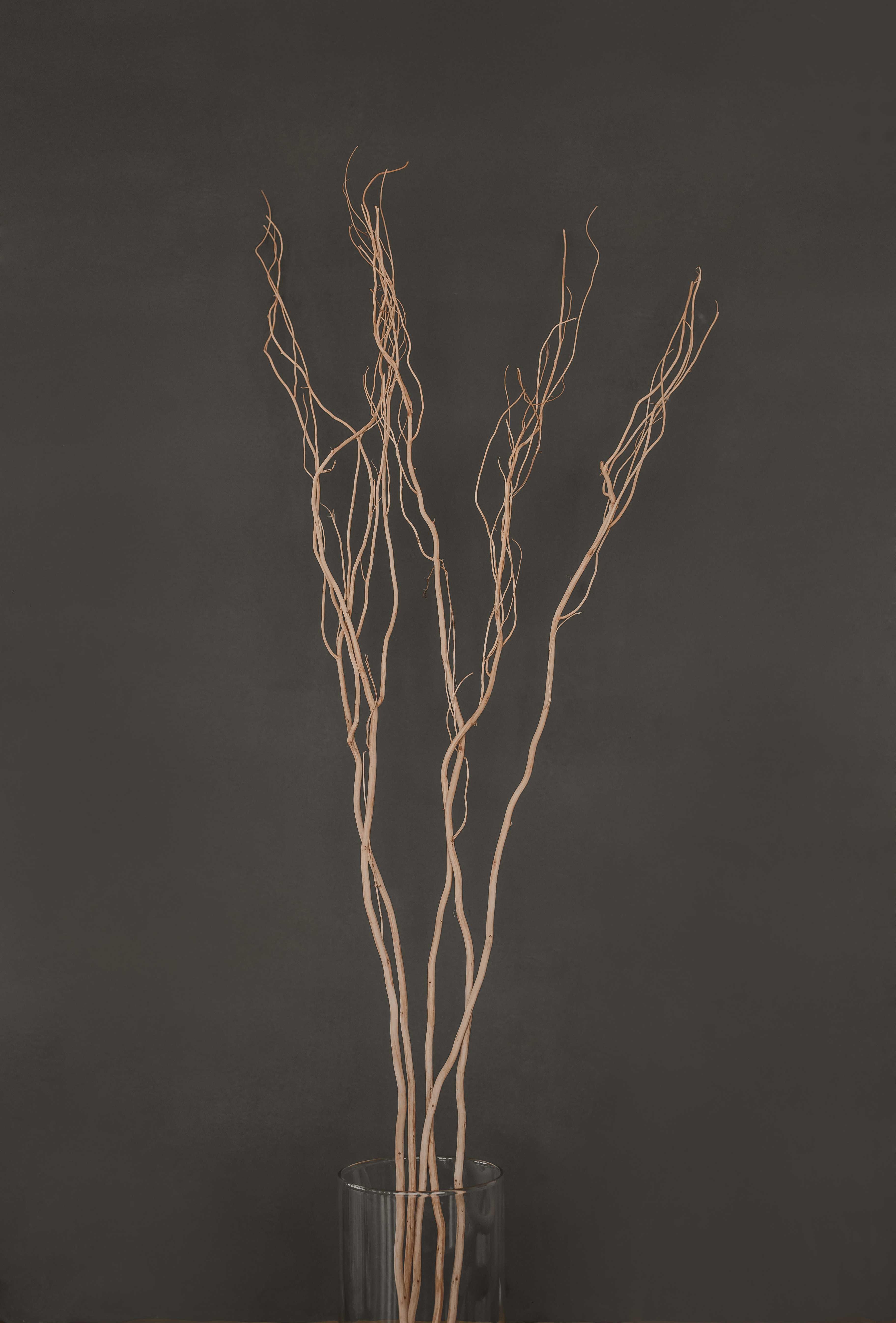 Ветка натуральная, 120 см